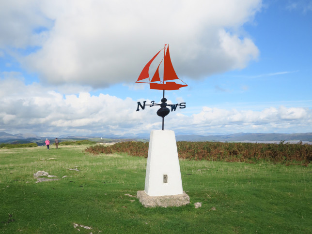 trig weather vane 2